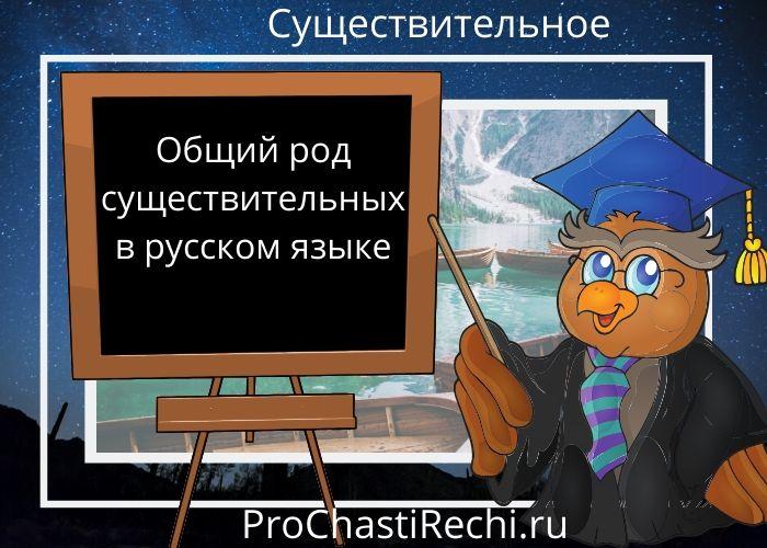 Общий род существительных в русском языке