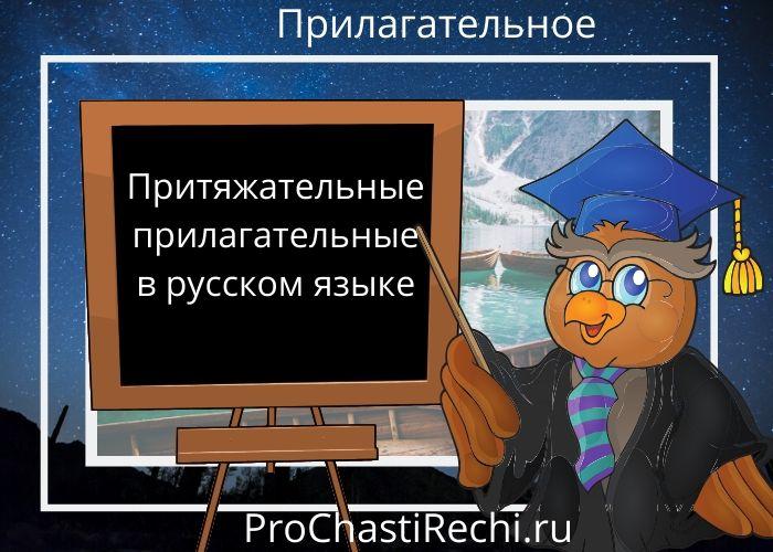 Притяжательные прилагательные в русском языке